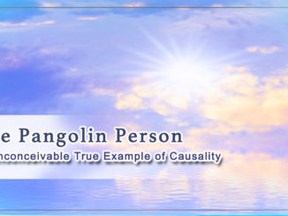 An Inconceivable True Example of Causality–The Pangolin Person